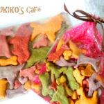 Twitterで犬用クッキーくじプレゼント☆どうもありがとうございました!