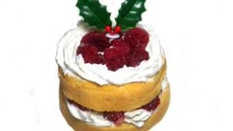 犬用クリスマスケーキレシピ【ラズベリーデコレーションケーキ】